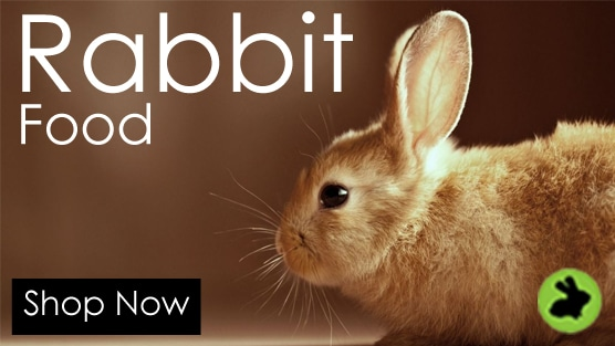 rabbit - safe & sound colour contact lens care solution 120ml