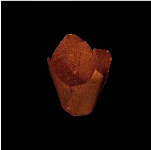 Tulip Paper Cake Cup Brown 17.5cm X 17.5cm (250pcs per Packet)